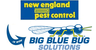 new england pest control logo and big blue bug solutions logo