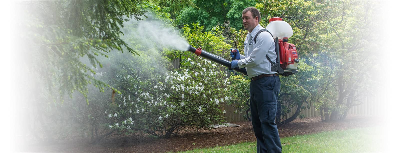 blue bug technician spraying for mosquitoes